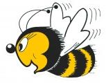 Včelka samolepící velká